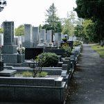 犬連れでのお墓参りは宗教観的に禁止?マナーや注意点を紹介