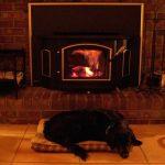 犬はストーブで火傷しやすい!ストーブガードの重要性!