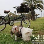 犬を自転車のカゴに乗せるならペットポーターがおすすめ